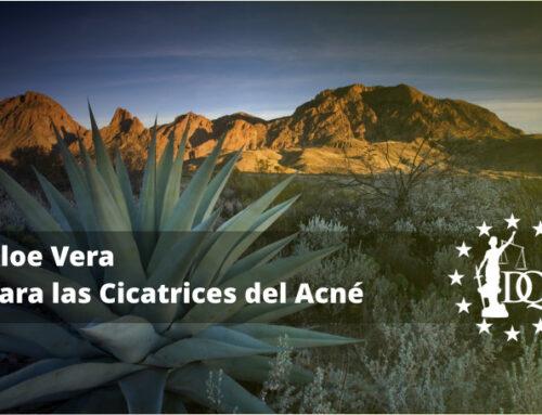 Aloe Vera para las Cicatrices del Acné | Estudiar Estética Online